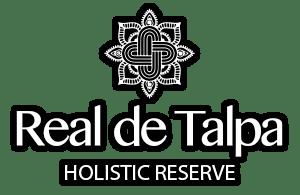 World Class Development In Talpa De Allende Mexico